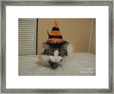 The Cat Is The Witch Framed Print