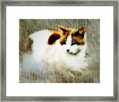 Framed Print featuring the digital art The Cat by Persephone Artworks