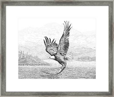 The Catch Framed Print by Carl Genovese
