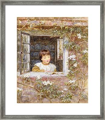 The Caterpillar Wc On Paper Framed Print