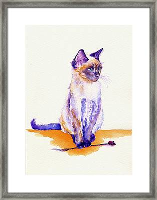 The Catmint Mouse Hunter Framed Print by Debra Hall
