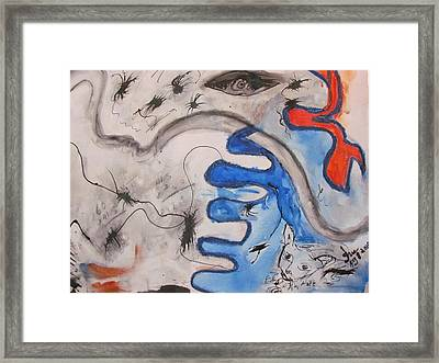 The Cat's Eye Framed Print by Shea Holliman