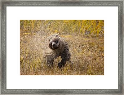 The Center Of The Storm Framed Print by Tim Grams