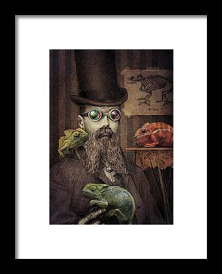 Lizard Framed Prints