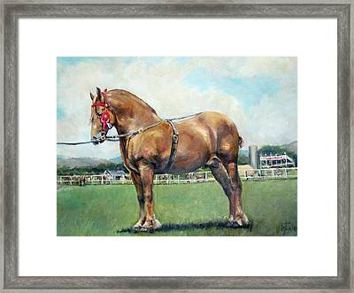 The Champ Framed Print by Donna Tucker