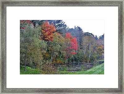 The Change In Life Framed Print