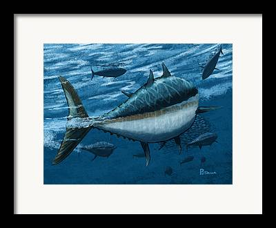 Deep Ocean Framed Prints