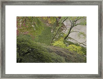 The Chicago Art Institute Wall Vines Framed Print by Thomas Woolworth