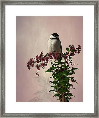 The Chickadee Framed Print