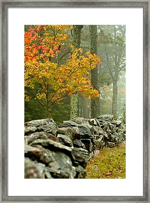 The Chill Framed Print by Aron Kearney