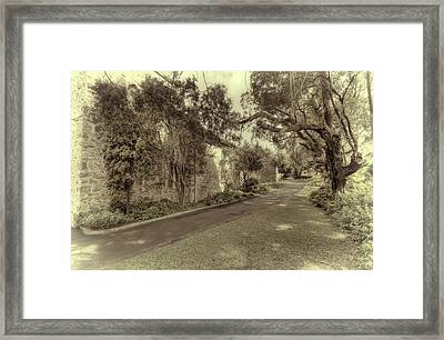 Framed Print featuring the photograph The Church Lane by Elaine Teague