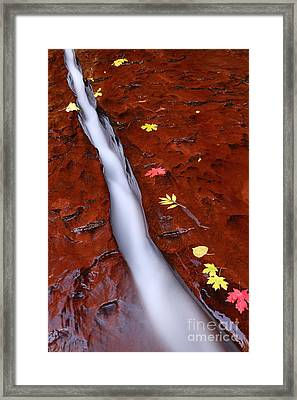 The Chute Framed Print