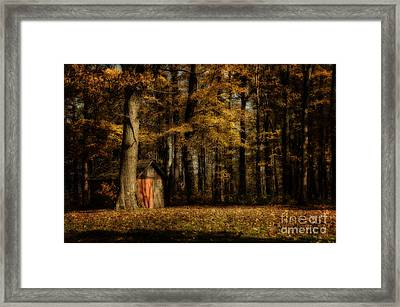 The Clearing Framed Print by Lois Bryan