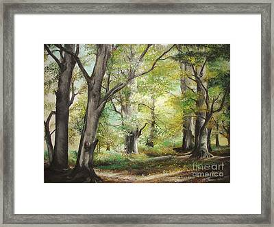 Framed Print featuring the painting The Clearing by Sorin Apostolescu