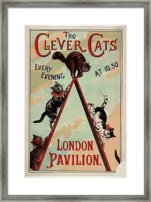 The Clever Cats Framed Print