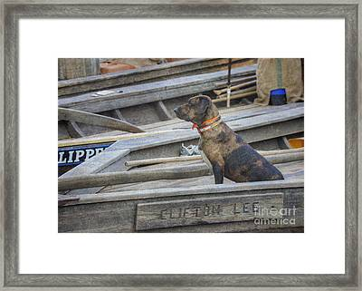 Framed Print featuring the photograph The Clifton Lee 2 by Pete Hellmann