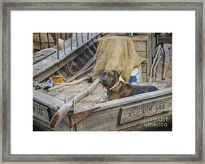 Framed Print featuring the photograph The Clifton Lee by Pete Hellmann