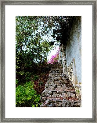 Framed Print featuring the photograph The Climb by Amar Sheow