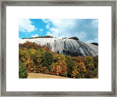 Framed Print featuring the painting The Climb by Debra Crank