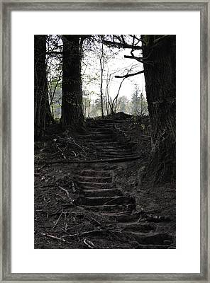 The Climb Framed Print
