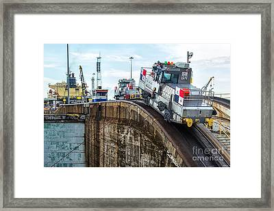 The Climbing Mule Of The Panama Canal Framed Print