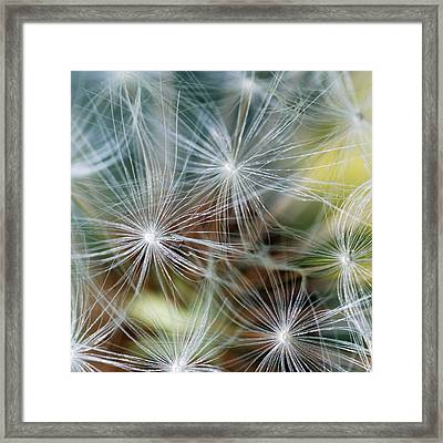 The Clock Framed Print by Wendy Wilton