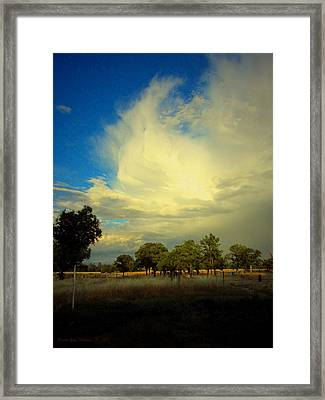 The Cloud Framed Print by Joyce Dickens