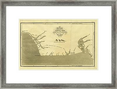 The Coast From Cradoo Lake To The High Land Of Cameroons Framed Print by Litz Collection