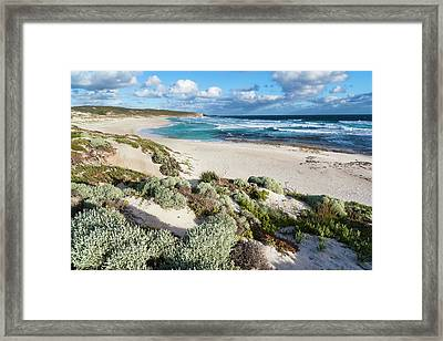 The Coastline At Hanson Bay On Kangaroo Framed Print by Martin Zwick