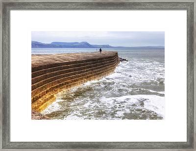 The Cobb - Lyme Regis Framed Print by Joana Kruse
