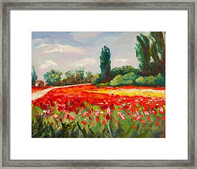 The Color Field Framed Print by Eve  Wheeler