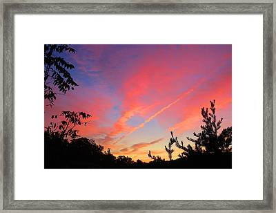 Framed Print featuring the photograph The Color Gets Good by Kathryn Meyer