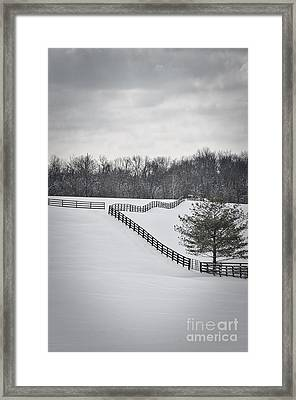 The Color Of Winter - Bw Framed Print