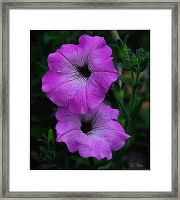 Framed Print featuring the photograph The Color Purple   by James C Thomas