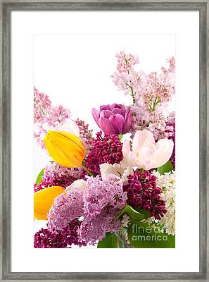 The Colorful Flower Framed Print by Boon Mee