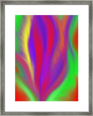 The Colors' Creation Framed Print by Daina White