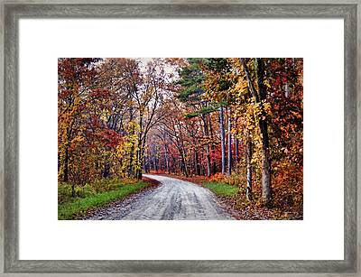 The Colors Of Fall Framed Print by Cricket Hackmann