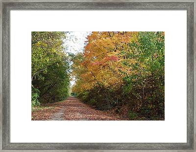 Framed Print featuring the photograph The Colors Of Fall by Ramona Whiteaker