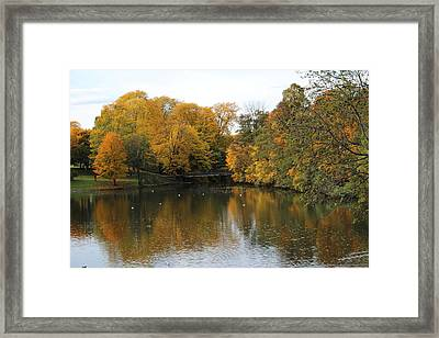 The Colors Of Halloween Framed Print