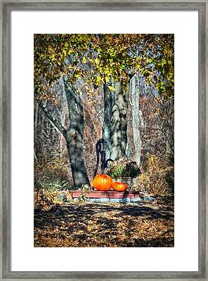 The Colors Of November Framed Print