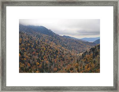The Colors Of The Smokies Framed Print