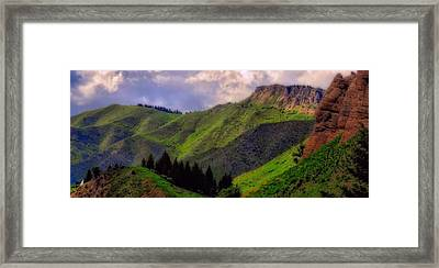 The Colors Of Wyoming In Summer Framed Print by Dan Sproul