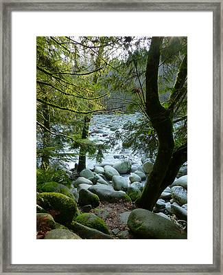 The Colour Of Truth Framed Print by Connie Handscomb