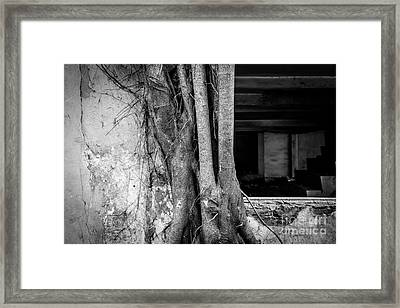 The Comeback Framed Print by Dean Harte