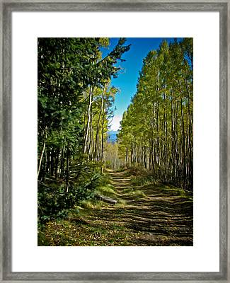 Framed Print featuring the painting The Cool Path Through Arizona Aspens by John Haldane