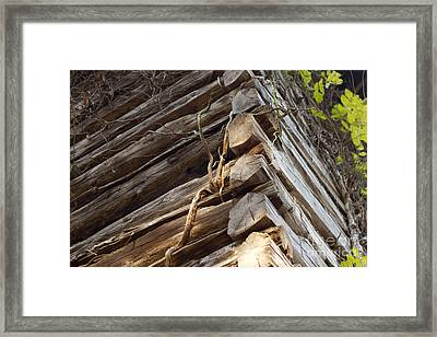 The Corner Framed Print by Amber Kresge