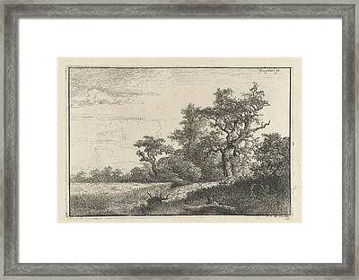 The Cornfield, Jacob Isaacksz Framed Print by Jacob Isaacksz. Van Ruisdael