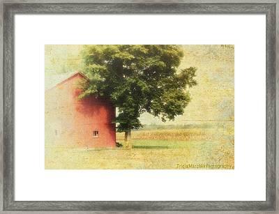 The Cornfield Framed Print