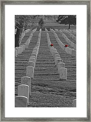 The Cost Of Freedom Framed Print by Tom Gari Gallery-Three-Photography