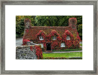 The Cottage Framed Print by Adrian Evans